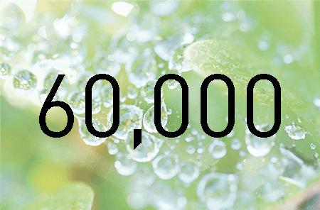 Order nummer 60 000 lades idag
